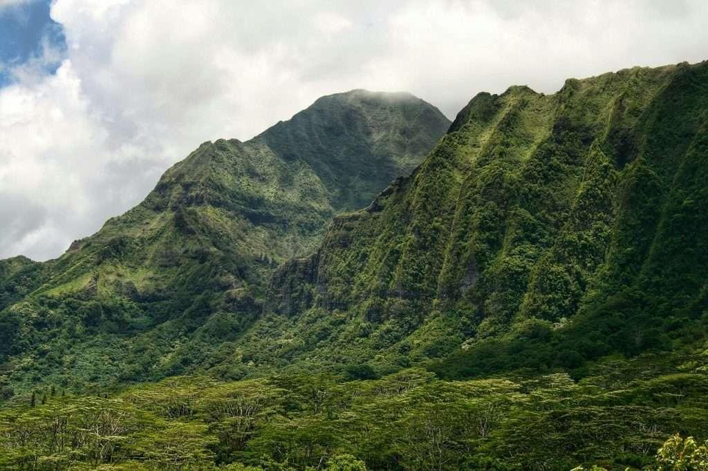 Montañas verdes - La escuela Zen nunca ha existido - Eihei Koroku