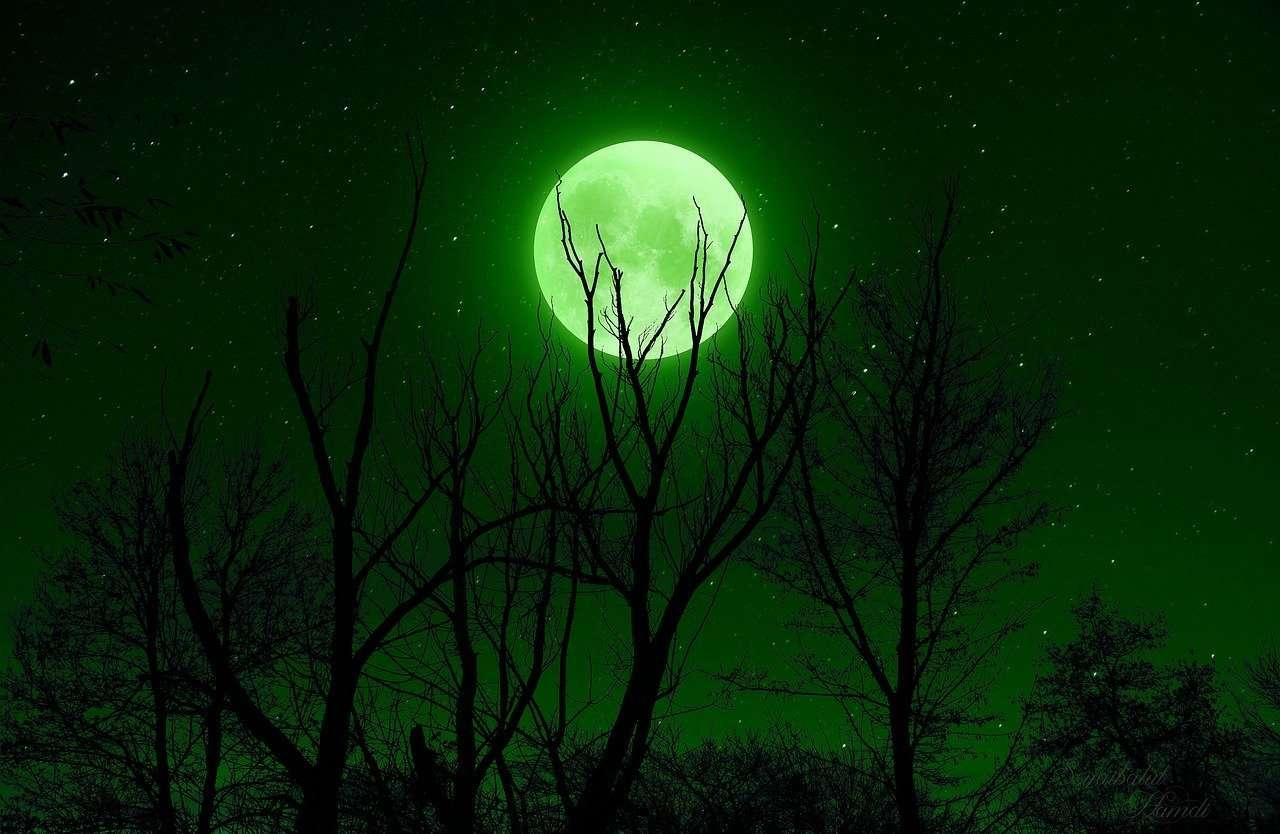 Completando una luna llena