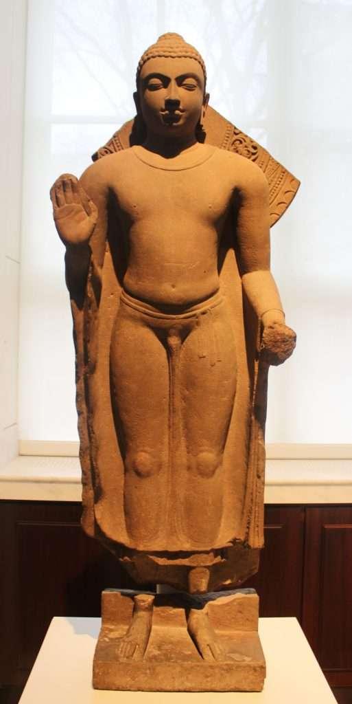 La joven mente de un viejo Buda