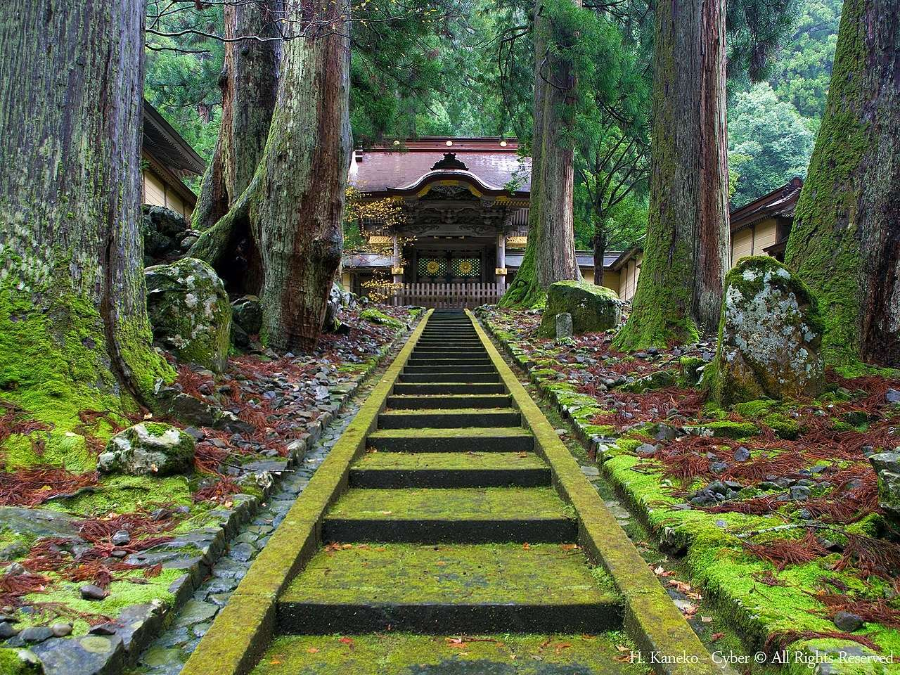 Vida y enseñanzas de Dōgen a través del Eihei Kōroku